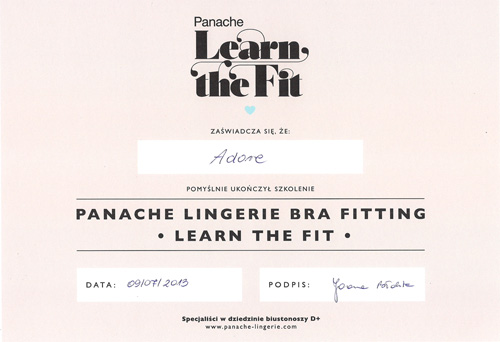 Dyplom Panache Learn the Fit